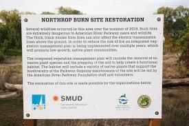 sacramento native plants news from the uu mile of the american river parkway u2013 uuss u2013 a