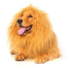 lion dogs lion mane for dog dogloveit dog costume with gift