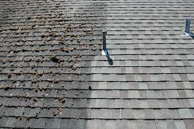 roof cleaning company buffalo grove il roof cleaner service
