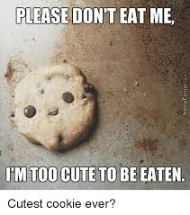 Eat Me Meme - please don t eat me itm too cute to be eaten cutest cookie ever