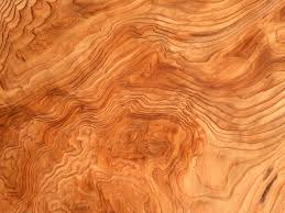 wood grain texture free stock photo a wood grain texture 11534