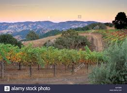 winery mountains northern california sunset