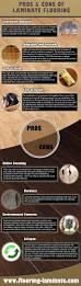 Cons Of Laminate Flooring 32 Best Infographics Images On Pinterest Infographics Computer