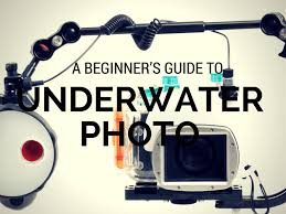 scuba diving photo guide be creative dive in diving magazine