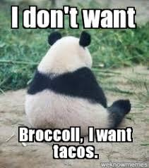 Panda Meme - panda i don t want broccoli i want tacos weknowmemes