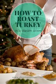 bear inthe big blue house the best thanksgiving ever how to cook turkey in a steam oven u2014 steam and bake