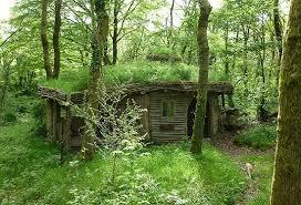 coolest cabins