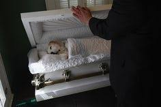 dog caskets if henry made gravestones cemeteries tombs