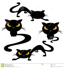 cat halloween picture funny halloween black cats halloween free download funny memes