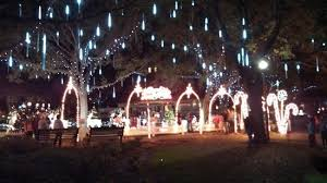 christmas light park near me christmas lights in park picture of the vinoy renaissance st
