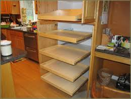 Rolling Shelves For Kitchen Cabinets How To Build A Sliding Pantry Cabinet Best Home Furniture Decoration