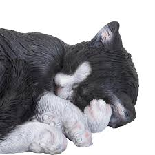 smudge sooty jaffa the realistic size sleeping cat garden
