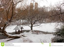 vista del lago en central park durante invierno fotos de archivo