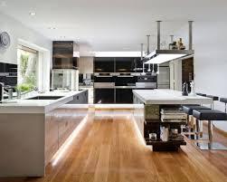 kitchen fetching modern open kitchen galley design and decoration
