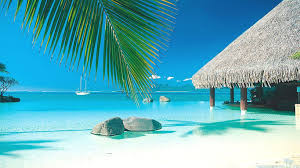beaches boat tahitian water island bungalow sea beach summer palm