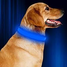 light up collar amazon amazon com led dog collar nylon webbing pet dog collar batteries