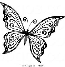 black and white butterfly collection 35