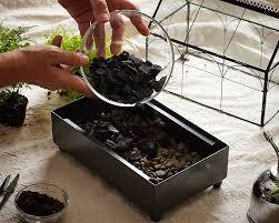 gardening 101 how to make a closed terrarium gardenista