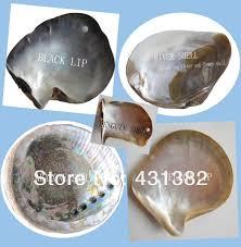 abalone shell green mosaic tile kitchen backsplash tiles mother of