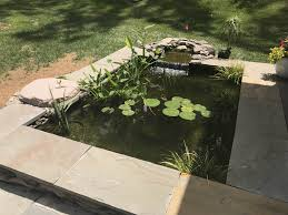 how long does it take to build a backyard pond