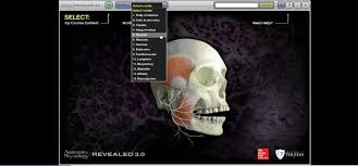 mcgraw hill connect anatomy image collections learn human