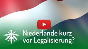 drogenpolitik in europa deutscher hanfverband
