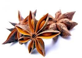 etoile de badiane cuisine badiane ou anis étoilé epices et aromates du peps en cuisine