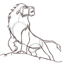 draw simba 8 steps pictures wikihow