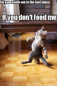 Feed Me Meme - meme maker im gonna kick you in the face jana if you dont feed me