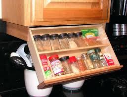 storage cabinets for kitchens cabinet storage ideas corner target kitchen gammaphibetaocu com