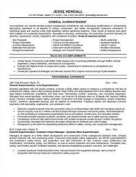 Generic Resume Objective Examples by General Objective For Resume Examples