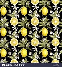 seamless lemon pattern lemon watercolor seamless pattern beautiful hand drawn texture