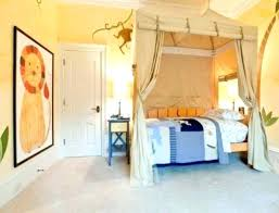 Bunk Bed Canopy Bunk Bed Canopy Ideas Mesmerizing Bunk Bed Canopy Ideas In Home