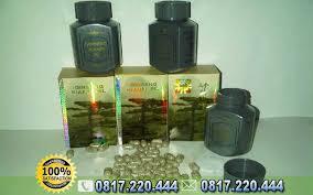obat penggemuk badan di apotik kianpi pil asli obat gemuk