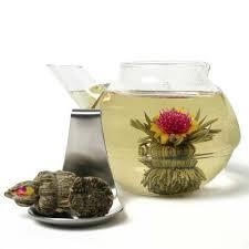 Jasmine Tea Flowers - 97 best futures tea images on pinterest flower tea tea types