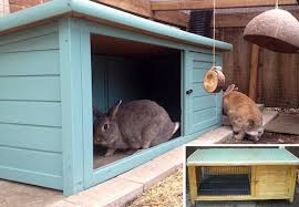 Diy Indoor Rabbit Hutch Providing Your Rabbit With A Shelter Or Hideaway