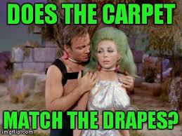 Match The Drapes Carpet Imgflip