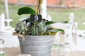 Tin Buckets For Centerpieces by Greenery U0026 Succulent Wedding Theme Lgbt Weddings