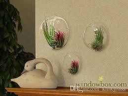 set of 3 glass half round globe wall bubbles terrariums wall