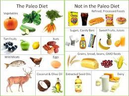 the paleo diet food list the paleo diet recipe workoutinfoguru