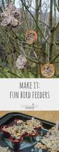 best ideas about homemade insecticide on pinterest gardening