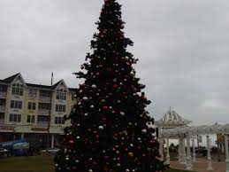 long branch tree lighting long branch tree lighting set for this weekend in pier village