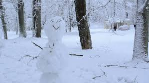 closeup of snowman stand trees covered with snow and