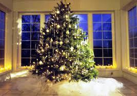 cheap christmas trees christmas day 25