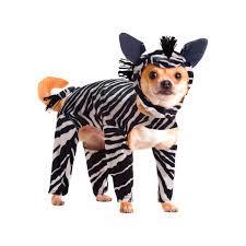 Funny Dog Costumes Halloween 7 Costume Ideas Emma Lol Images Pet