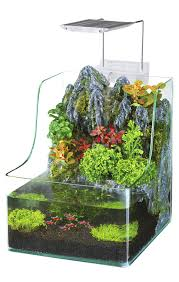 amazon com penn plax aqua terrarium planting tank with aquarium