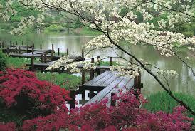 stone bridge over a japanese garden pond japanese water garden