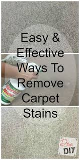 How To Remove Rug Stains Get Tips On How To Remove Carpet Stains With Pine Sol Learn More