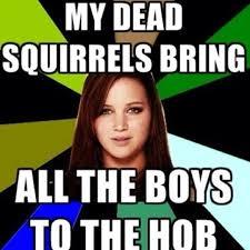 Dead Squirrel Meme - 8 best dead squirrels for jen images on pinterest squirrels