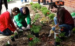 thanksgiving community service ideas community engagement student life depaul university division
